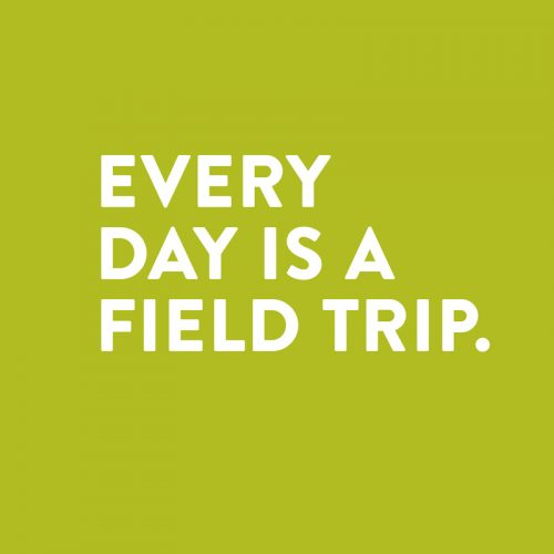 every day is a field trip